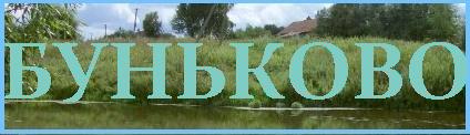 Сайт Буньково Ступинского района